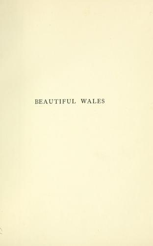 Download Beautiful Wales