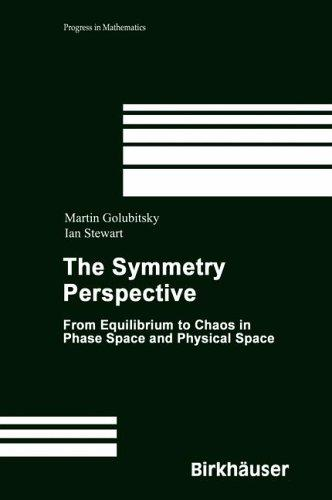 Download The Symmetry Perspective