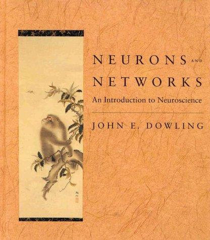 Download Neurons and networks